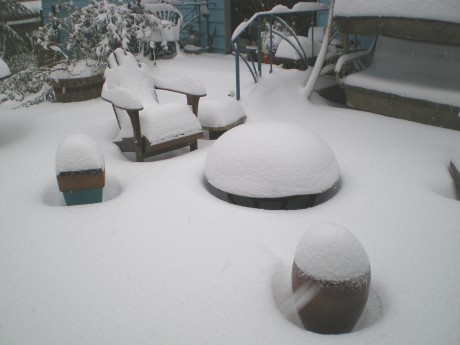 That round thing is a fire bowl on our patio.