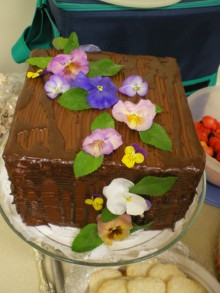 Beautiful cake made by a member of MEOW for classmates potluck!